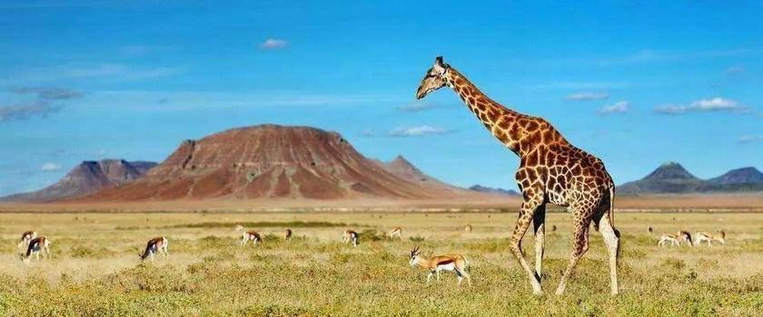 非洲旅游美景